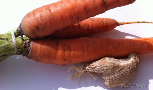 Морковно-имбирный крем-суп - рецепты, низкокалорийно, веган