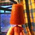 Мороженное-сорбет из абрикос - рецепты, сыроедные блюда