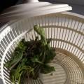 Сушка центрифуга для зелени - как высушить зелень?